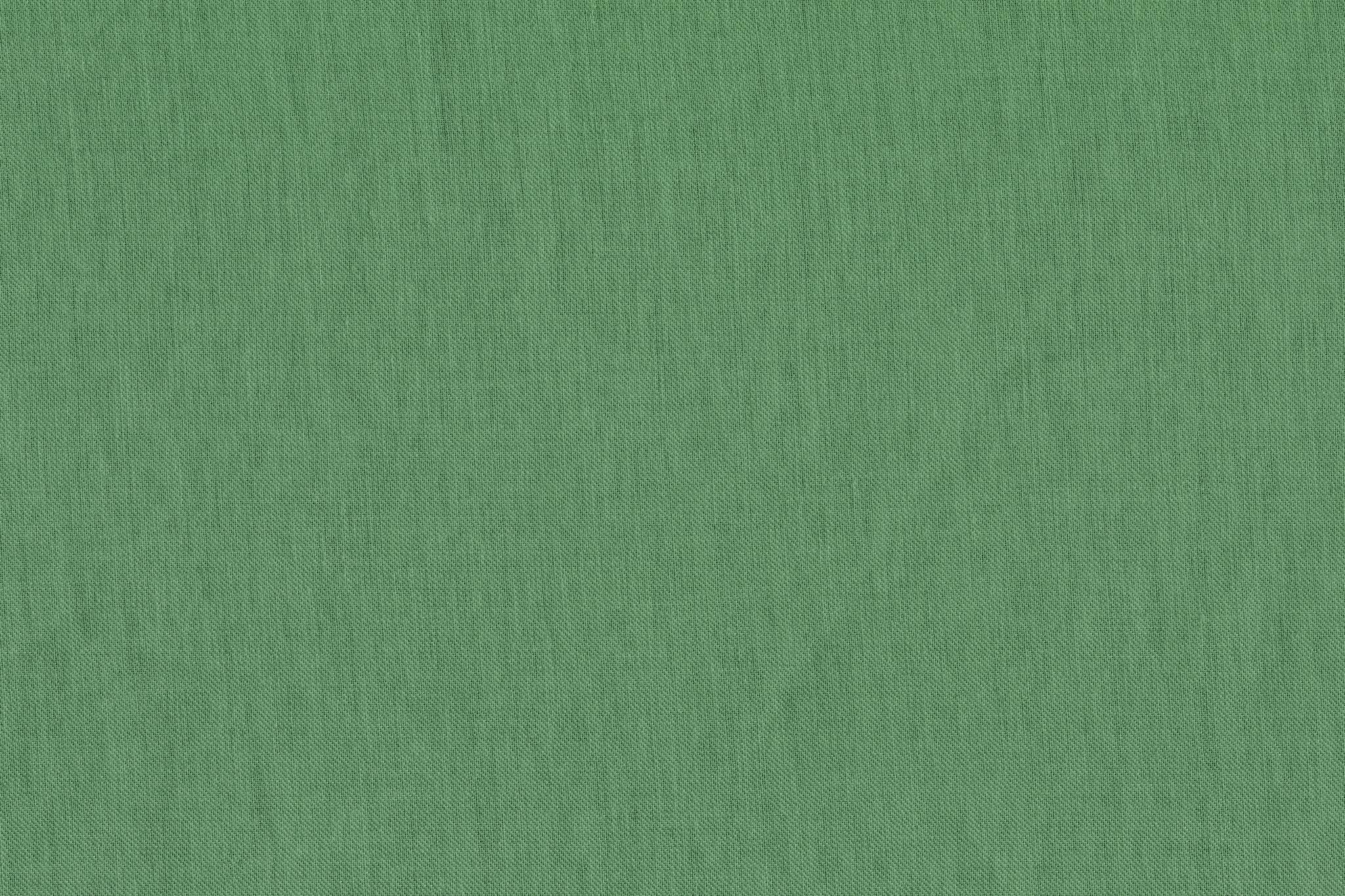 「緑色の布の写真素材」