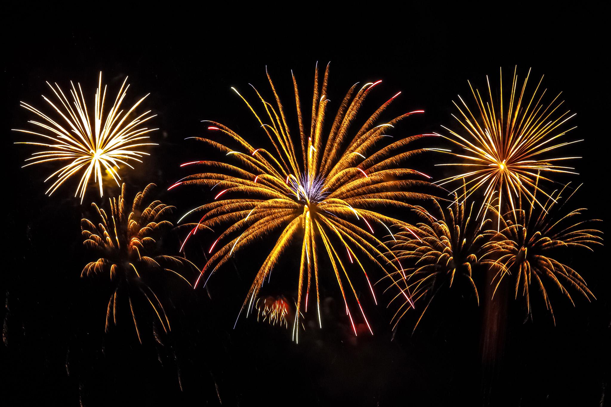 「金色椰子の木の打ち上げ花火」