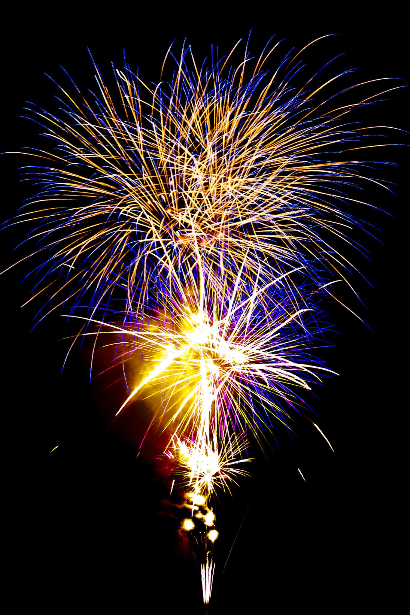 「夏の夜を華やかに彩る花火大会」の画像を無料ダウンロード