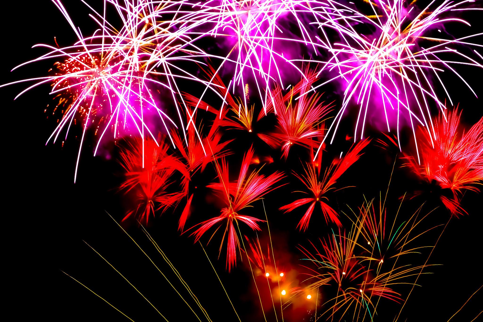 「祭りの夜を飾る花火」の素材を無料ダウンロード
