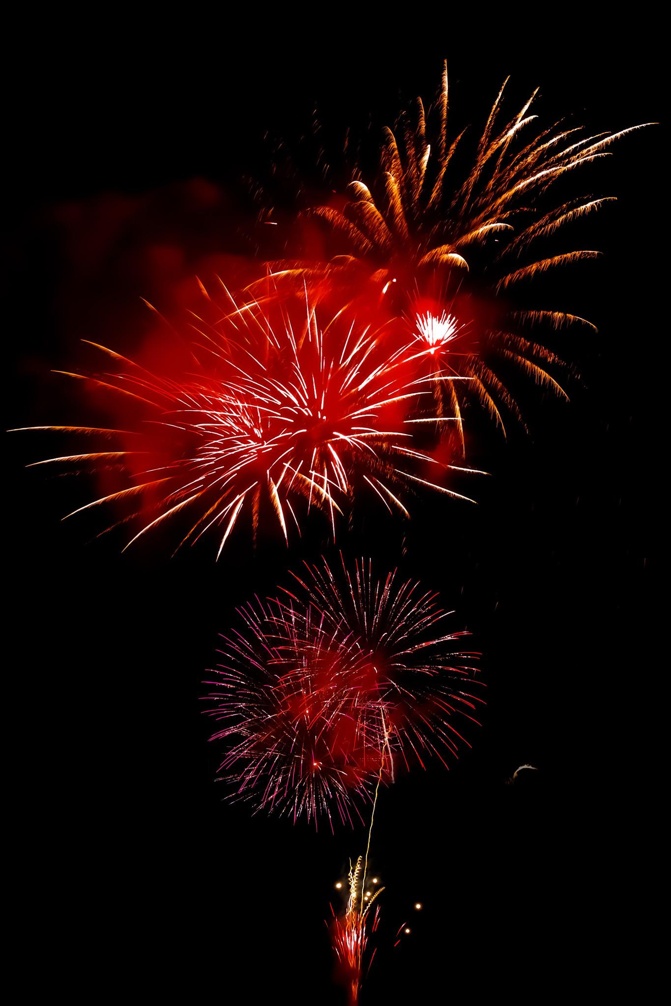 「見上げる花火の撮影画像」のテクスチャを無料ダウンロード