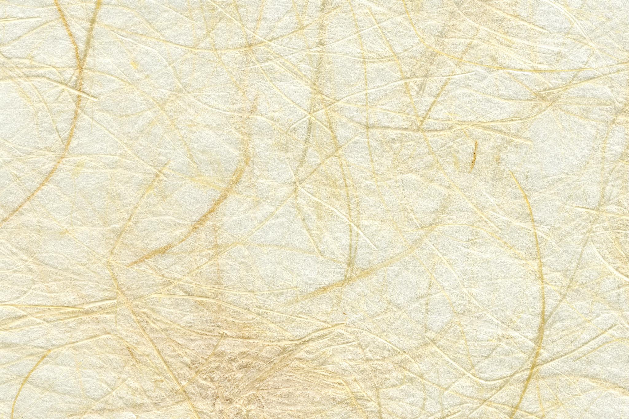 「長い楮の繊維が沢山入った白い和紙」の背景を無料ダウンロード