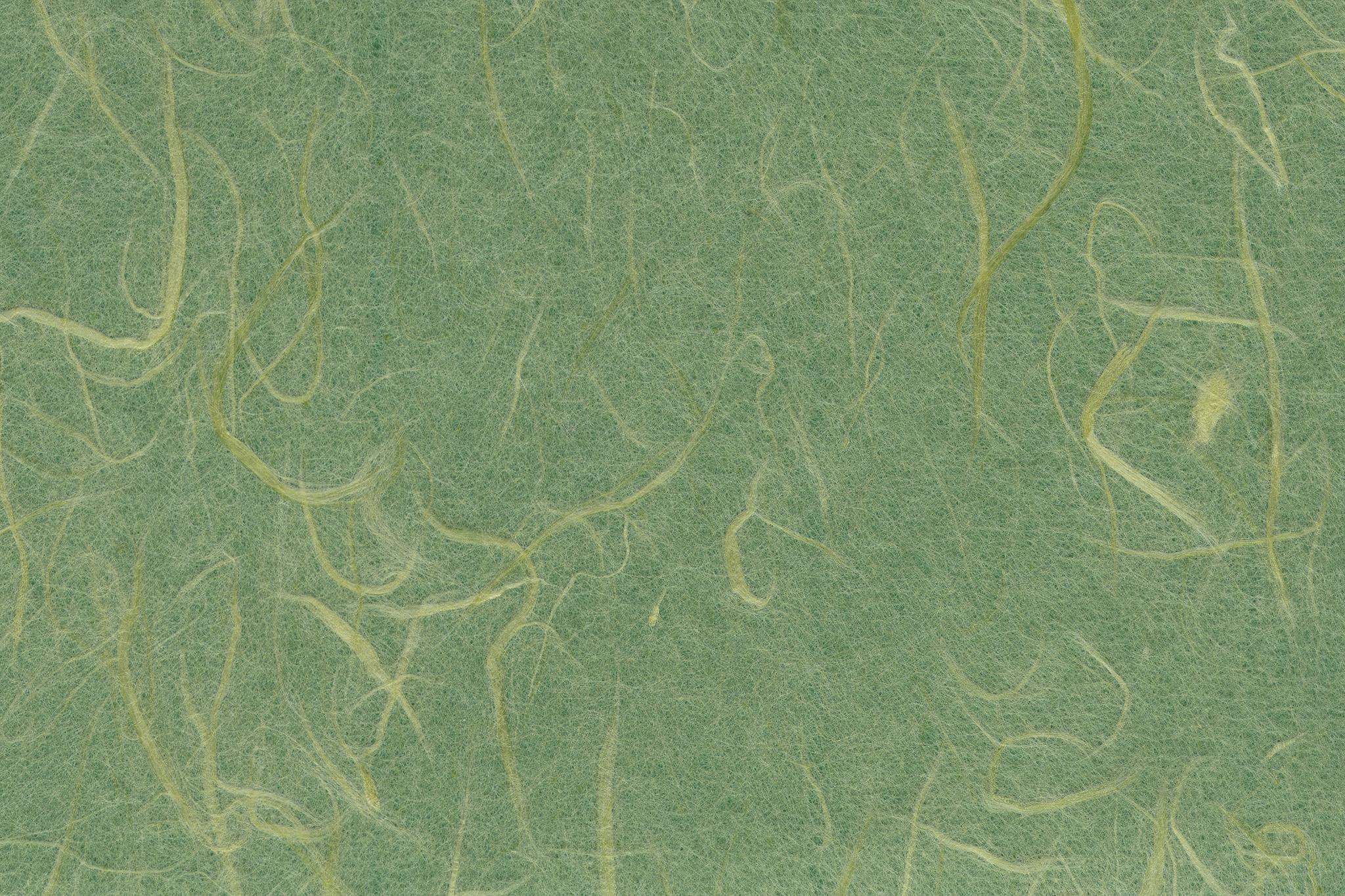 「風趣に富んだ虫襖色の和紙」の素材を無料ダウンロード
