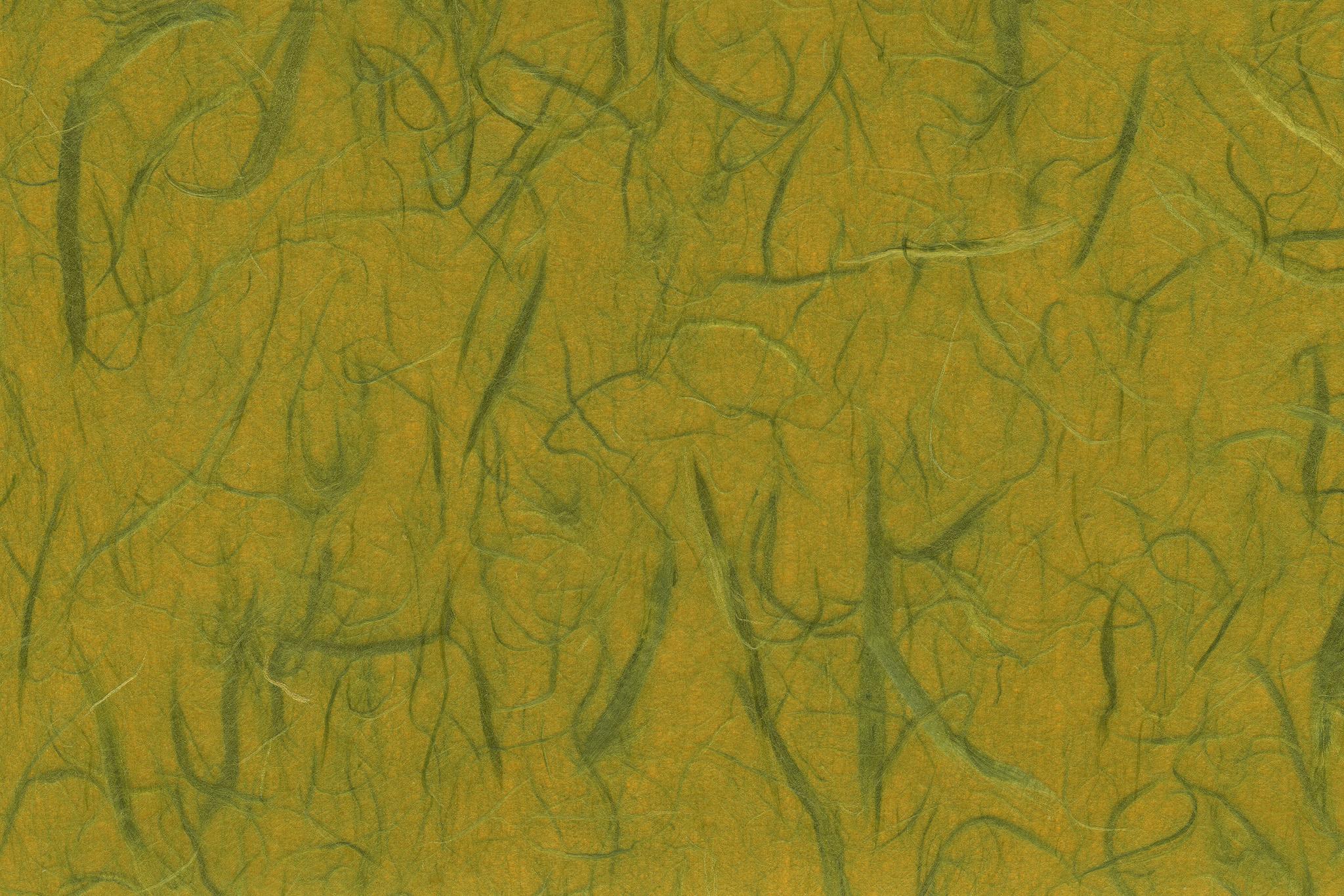 「緑雲竜柄の菜種油色和紙」の画像を無料ダウンロード