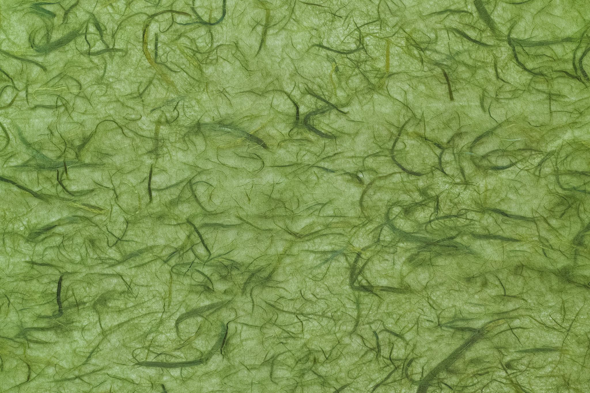「緑の筋が豊富に入った柳色和紙」