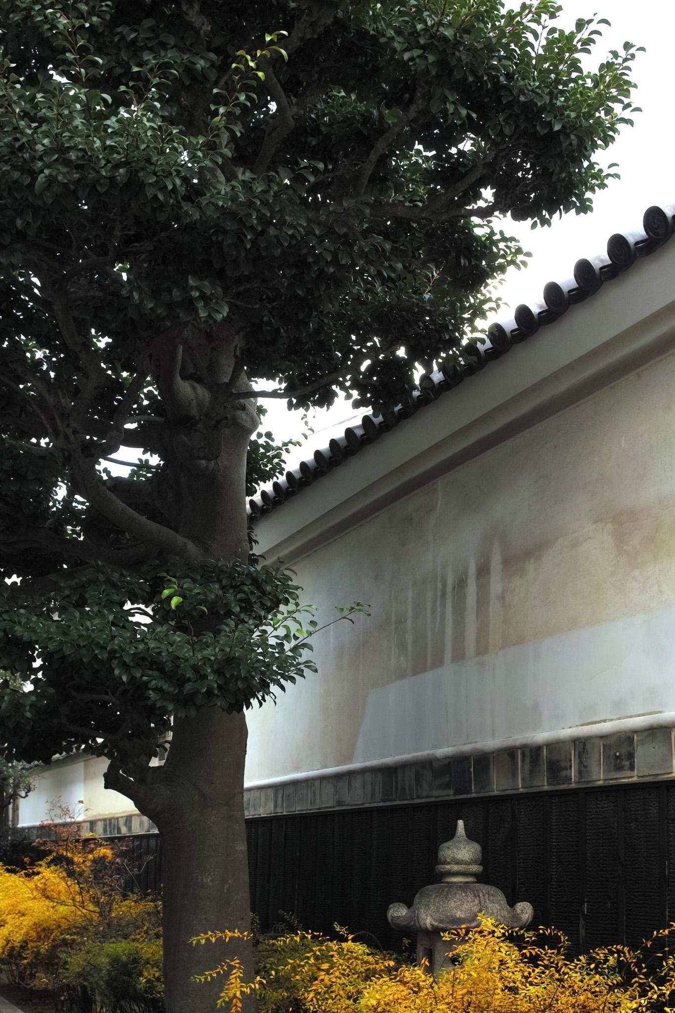 「和のイメージと日本」の素材を無料ダウンロード