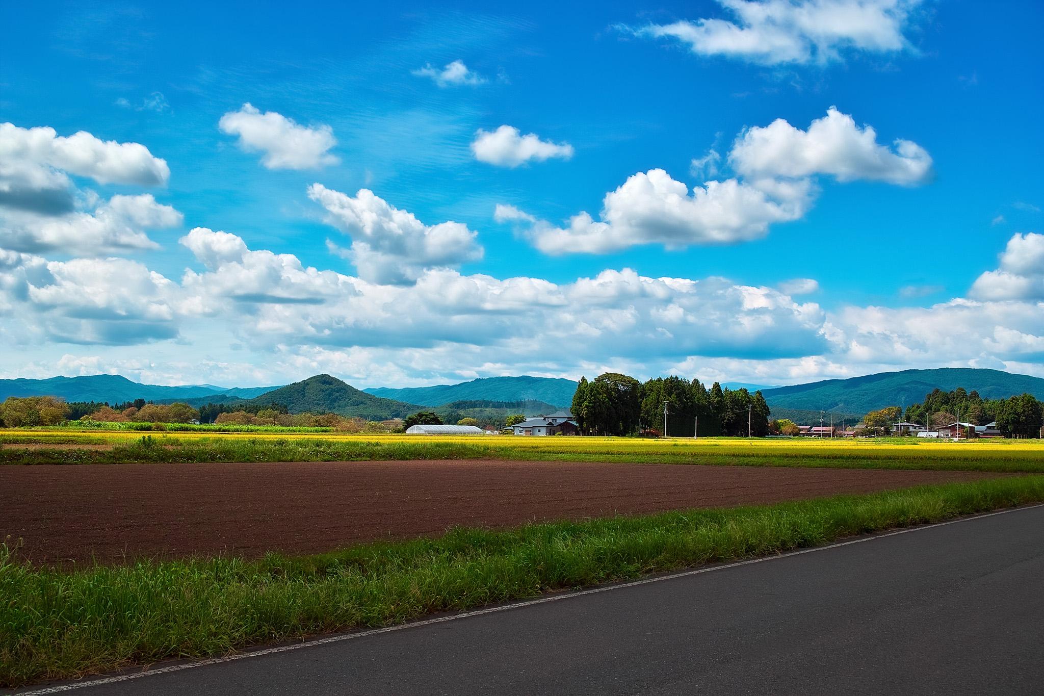 「道路沿いに田畑がある田舎の風景」