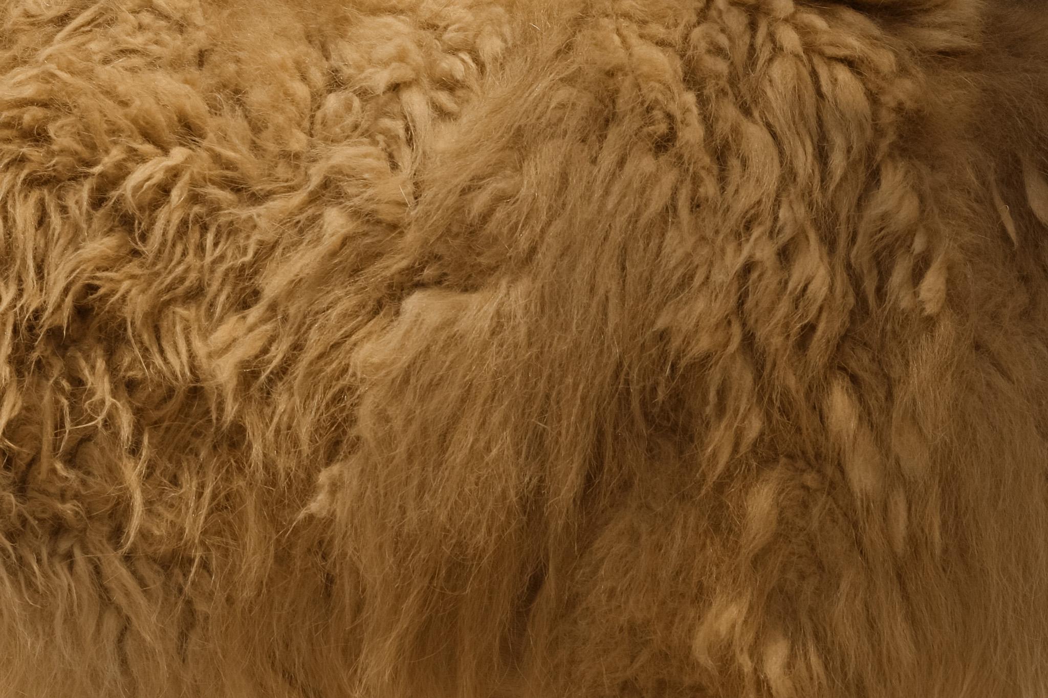 ラクダの毛のテクスチャ