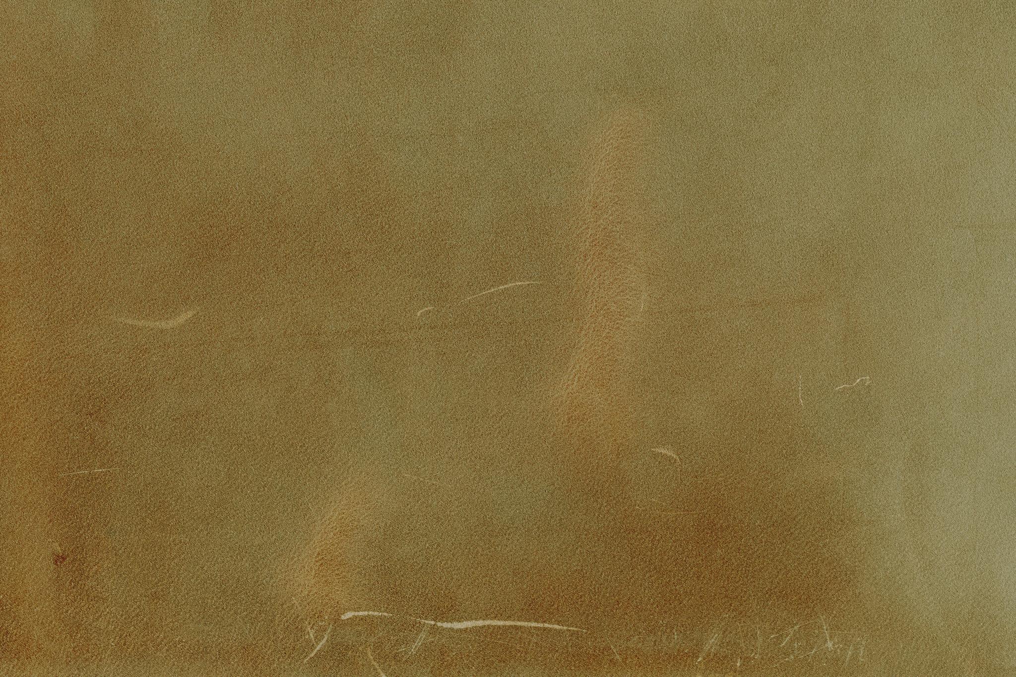 「傷のある薄茶色のレザー」の素材を無料ダウンロード