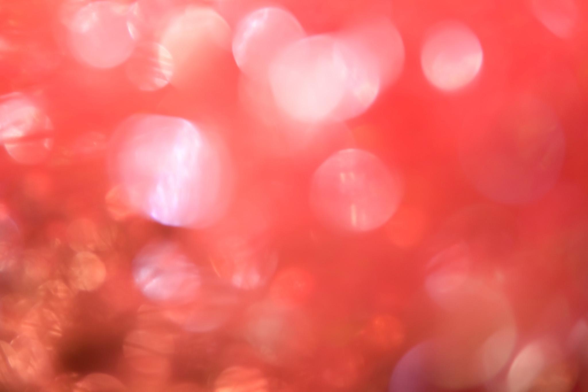 「揺れる赤い花のような光」の素材を無料ダウンロード