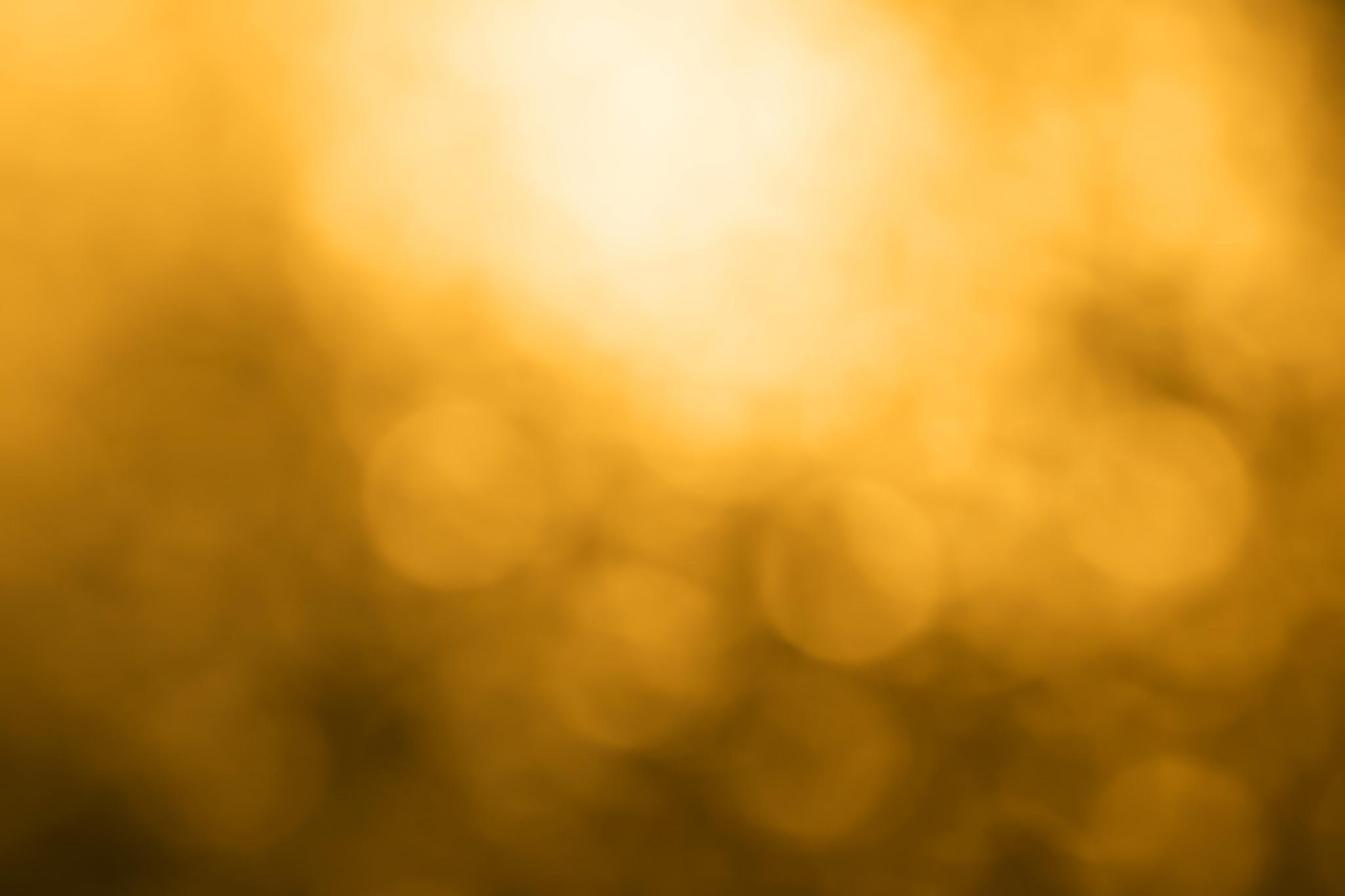 黄色い光の彼方へ