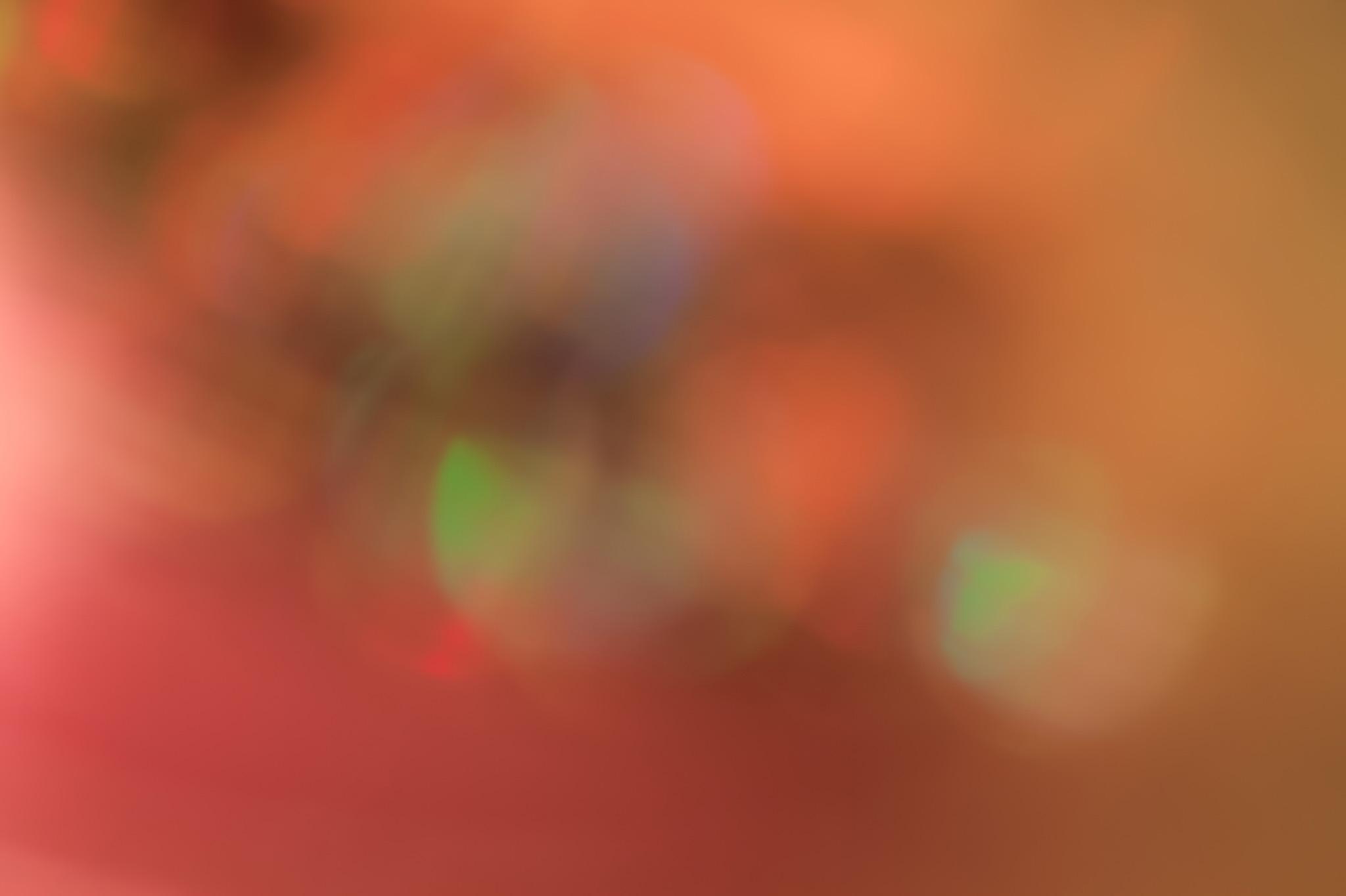 「光の色彩」