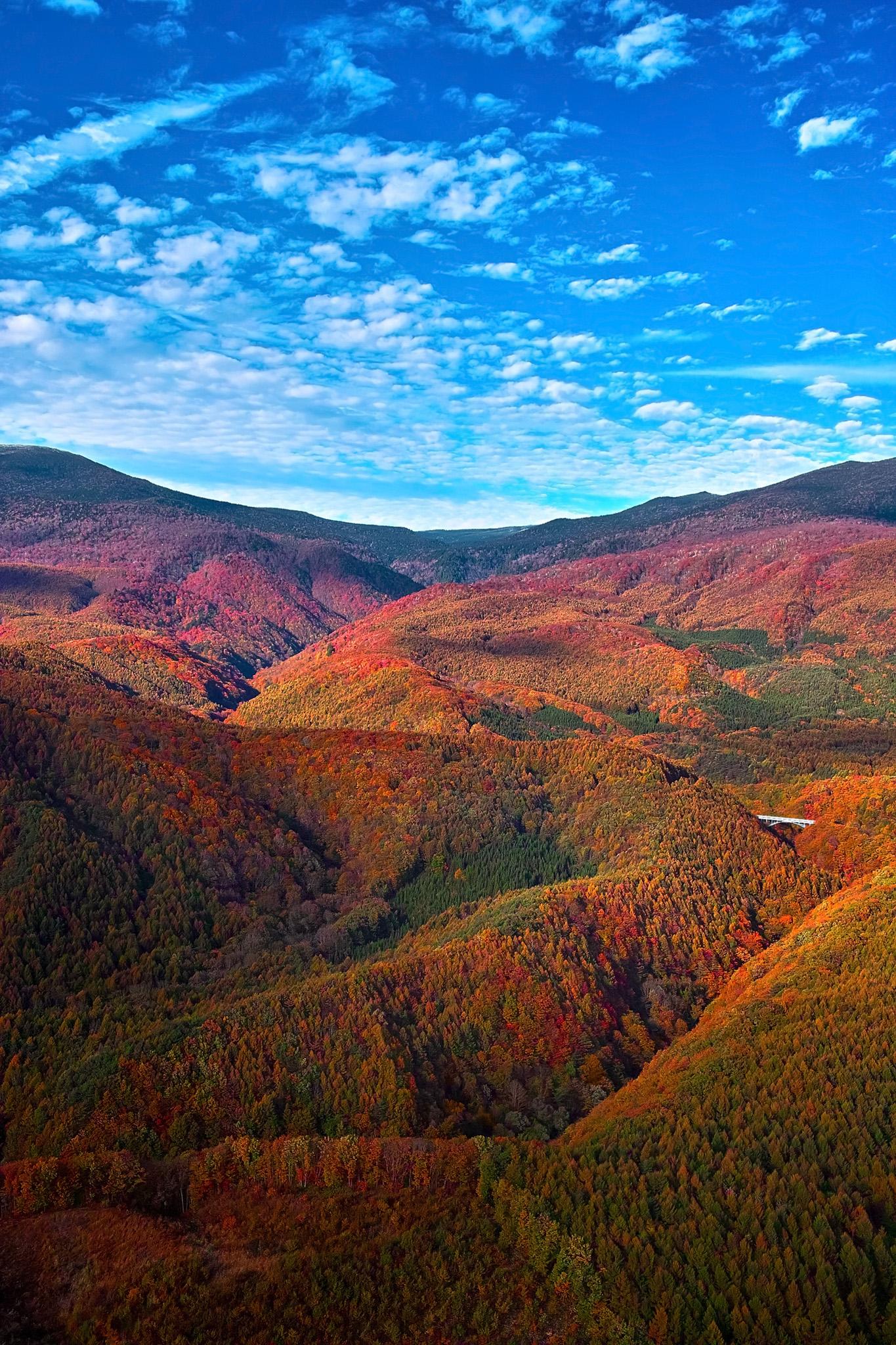 「一面紅葉する東北の連山」