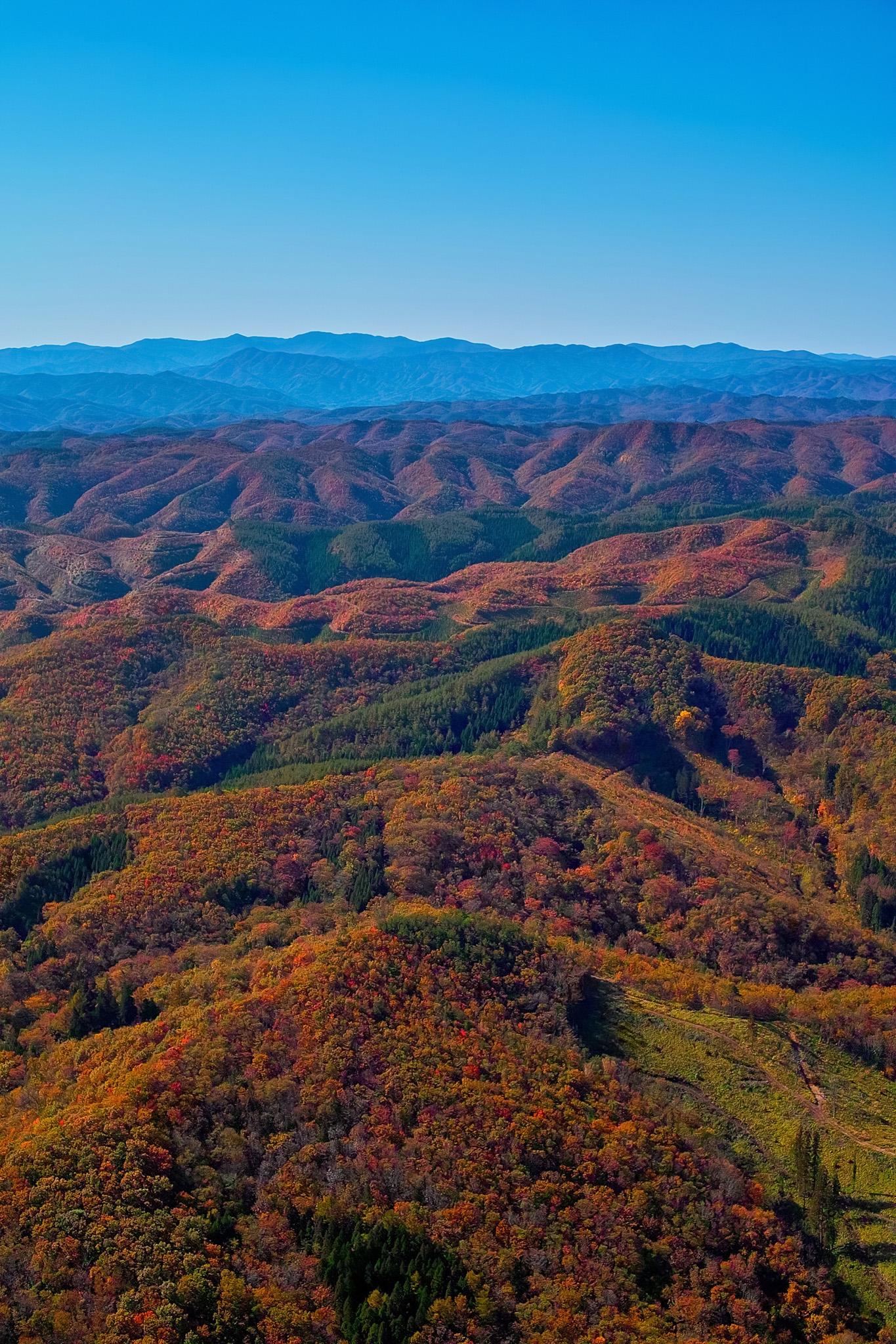 「連なる山々が紅葉で赤く染まる」