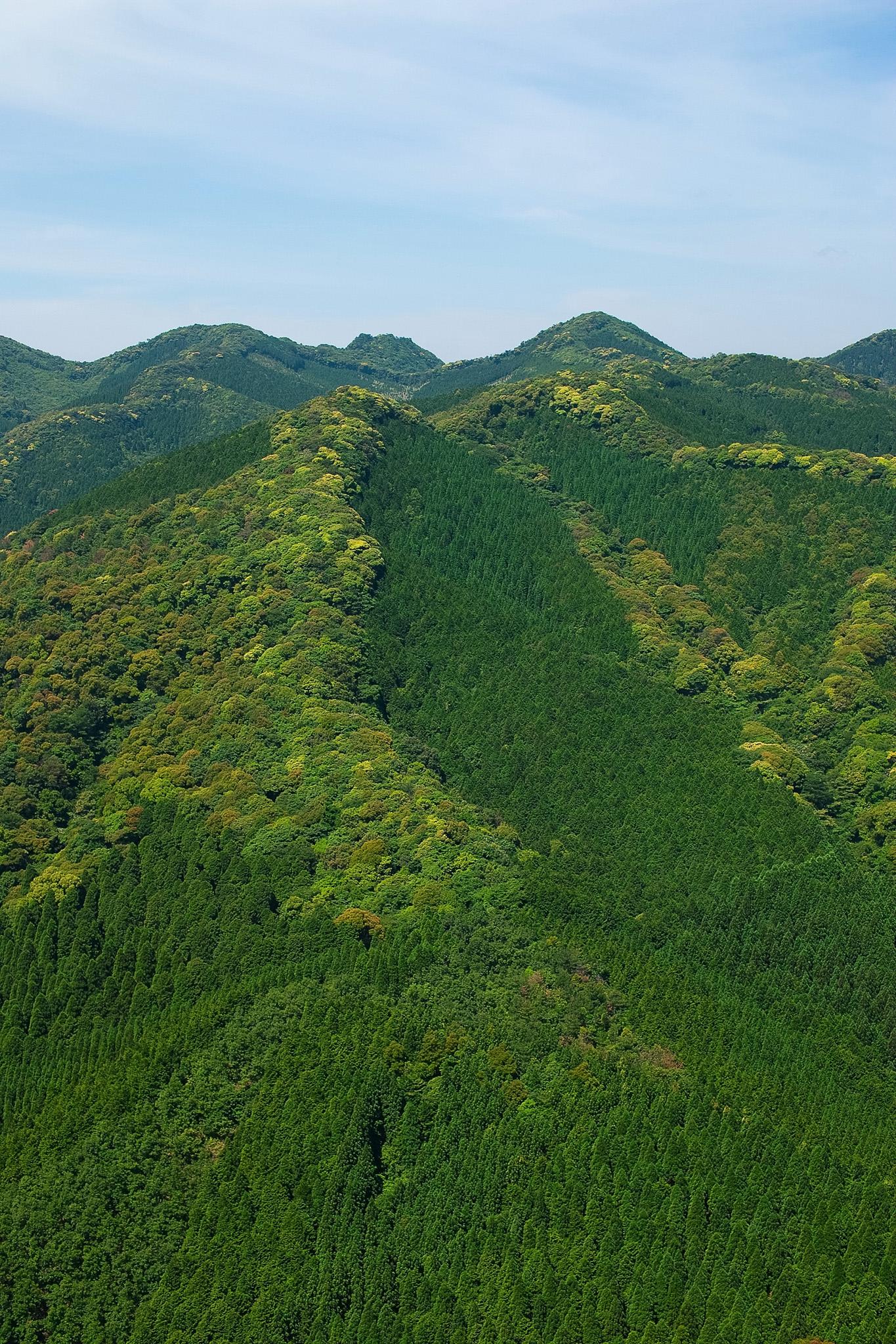「新緑が溢れる山腹の景色」の素材を無料ダウンロード