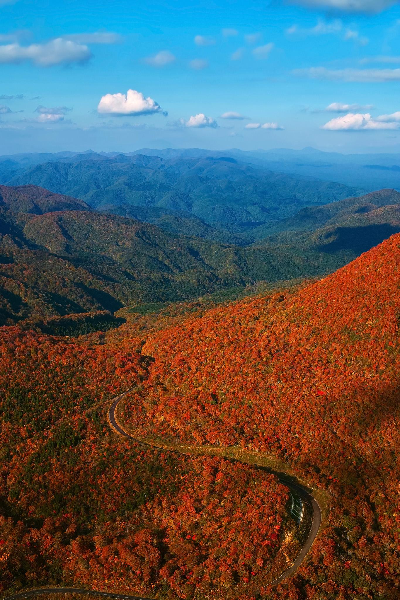 「紅葉する山を縫う道」