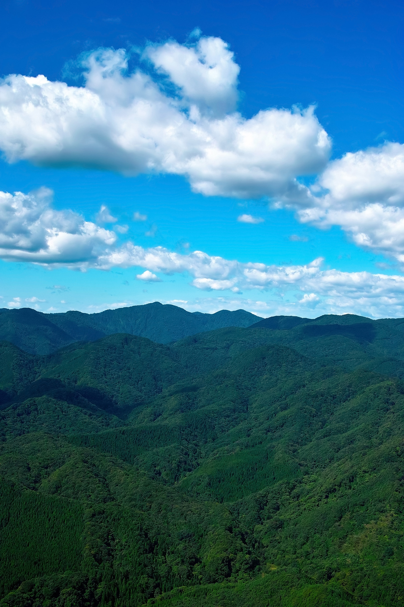 「四季の山」の画像を無料ダウンロード