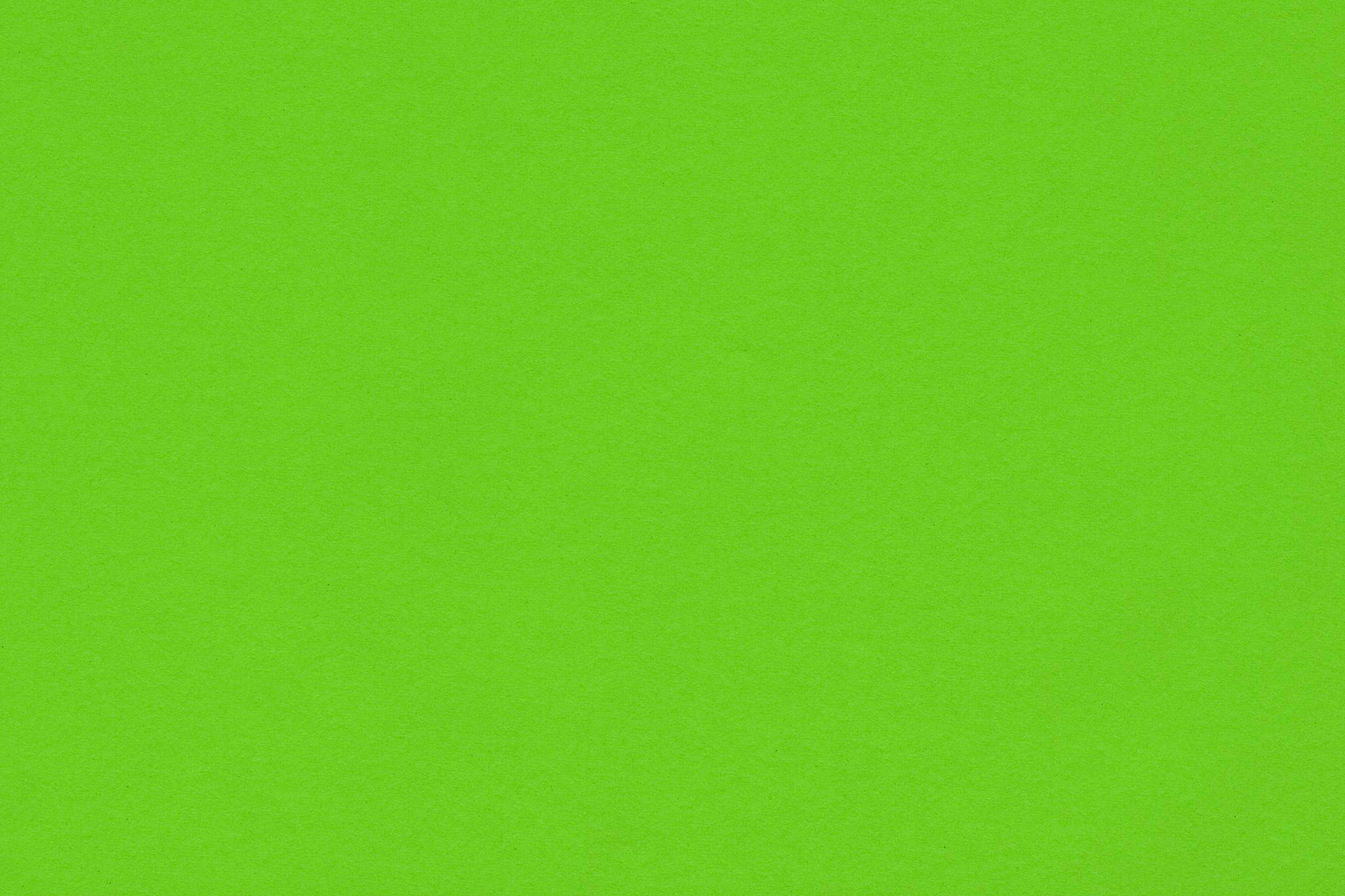 「若葉のような黄緑色の紙」