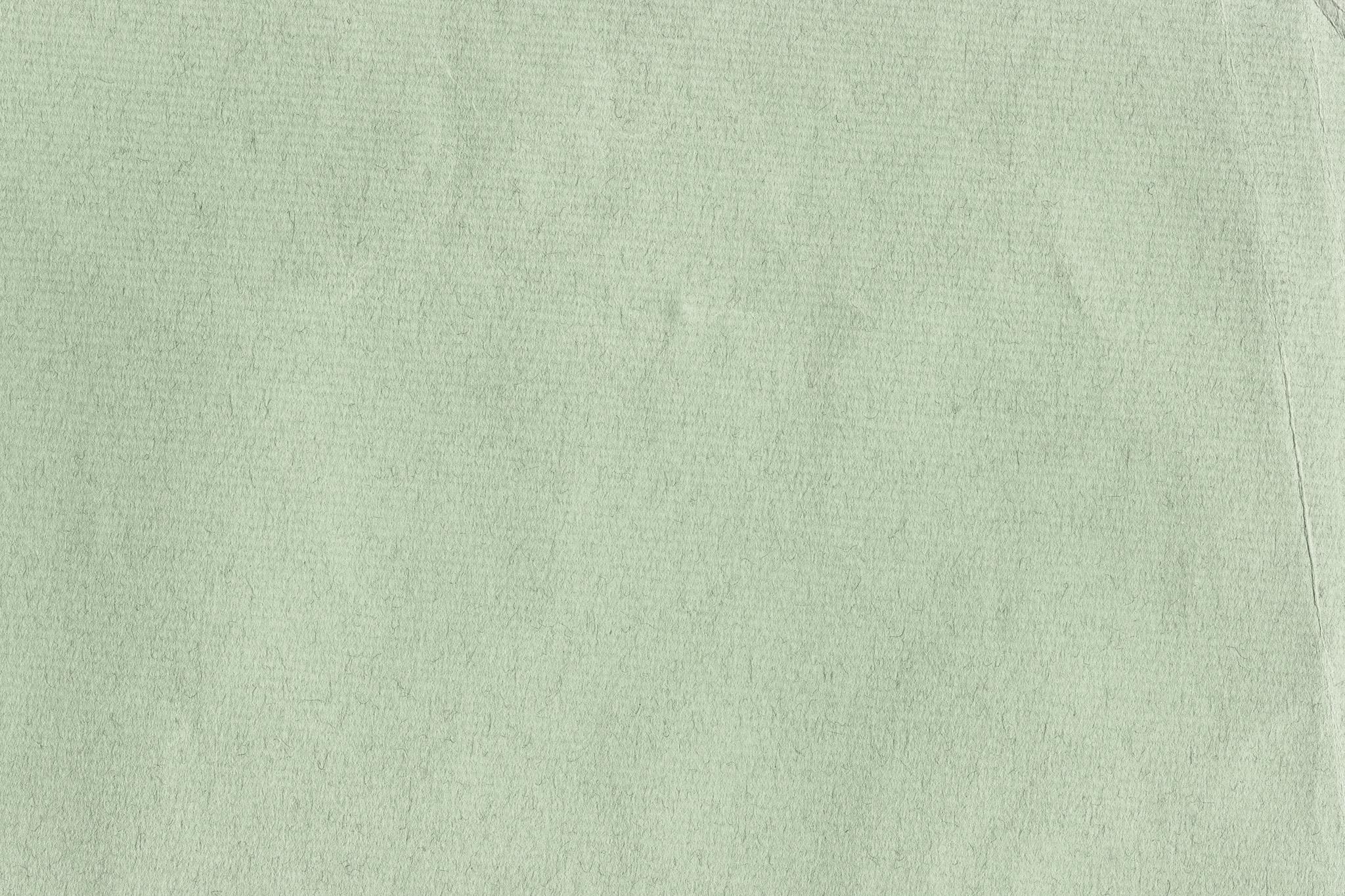 「繊維のテクスチャがある薄緑の紙」
