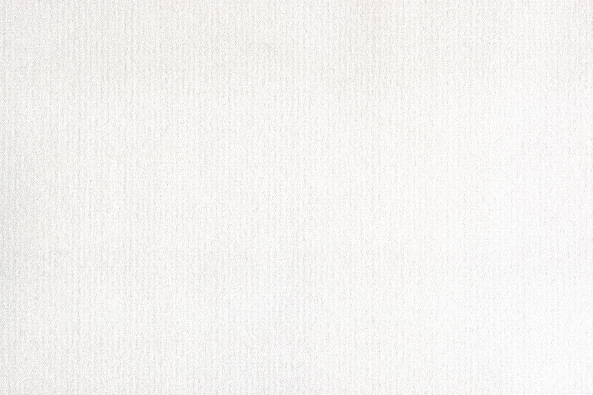 「白い紙」