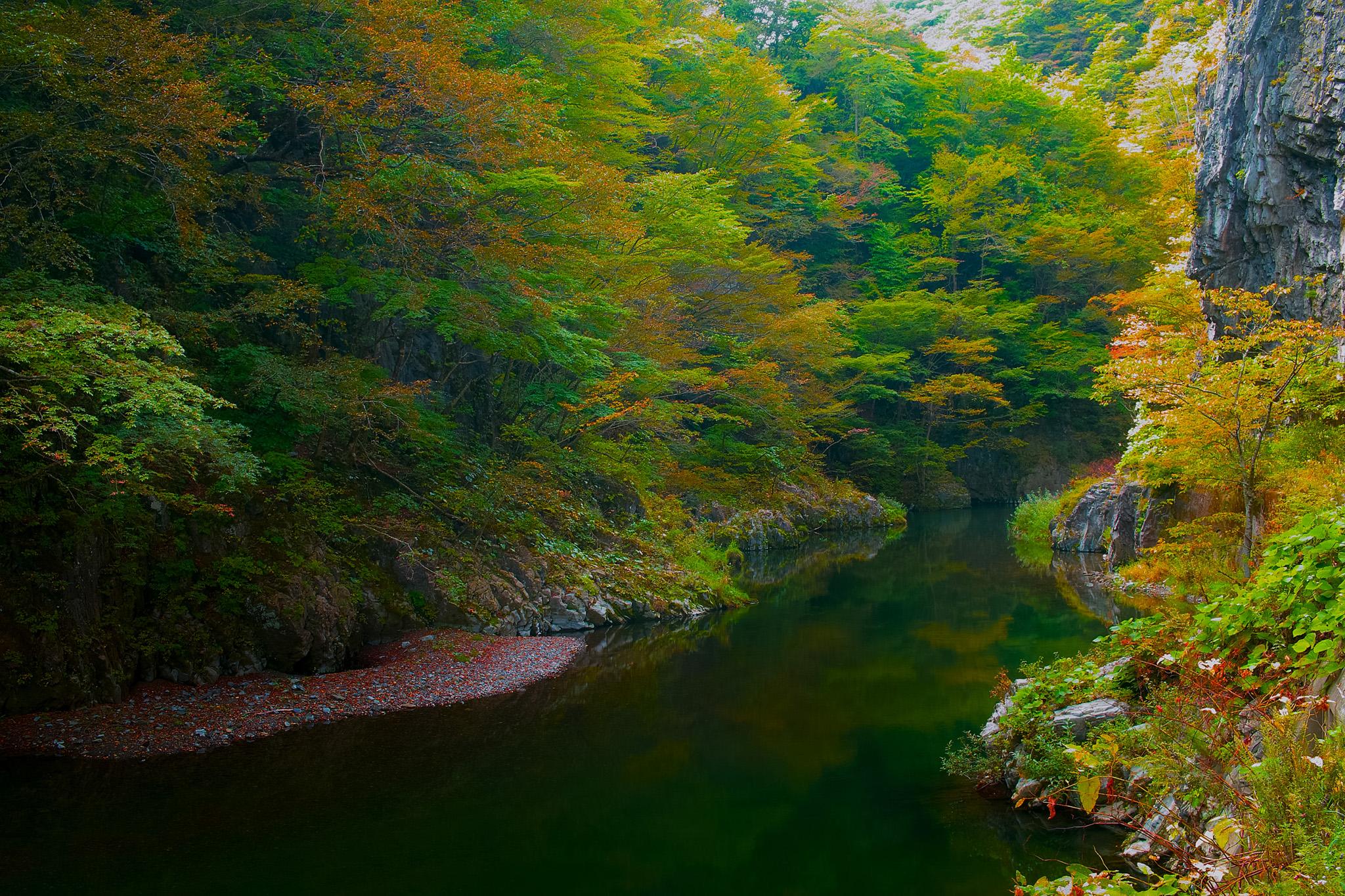 「秋の木立が映り込む淵」