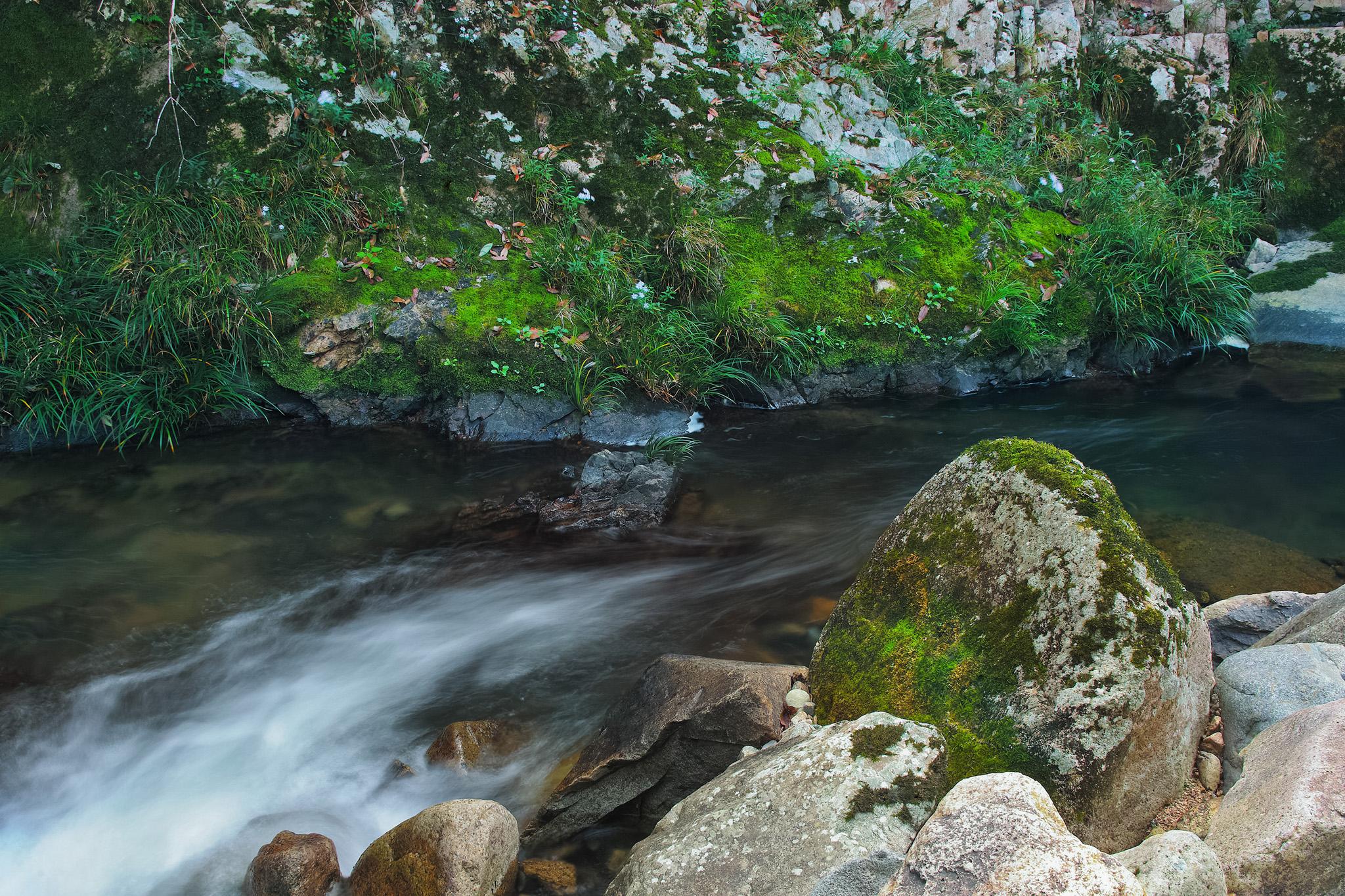 「岩の間を流れる小さな渓流」の画像を無料ダウンロード