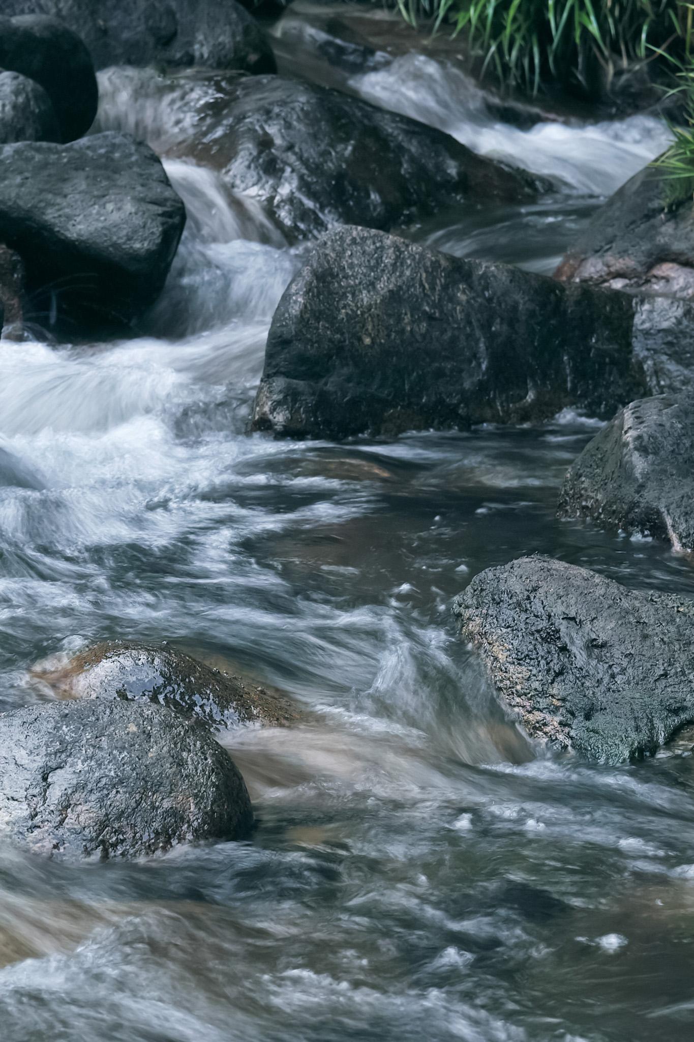 「四季の川」の画像を無料ダウンロード