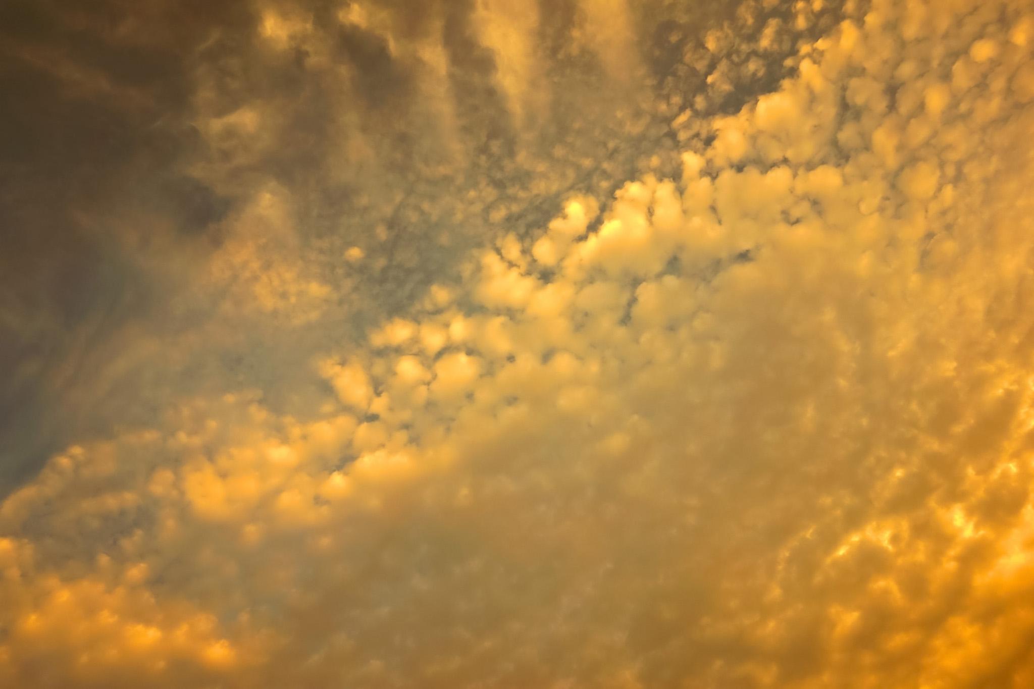 「黄金色の雲が夕焼けに煌めく」