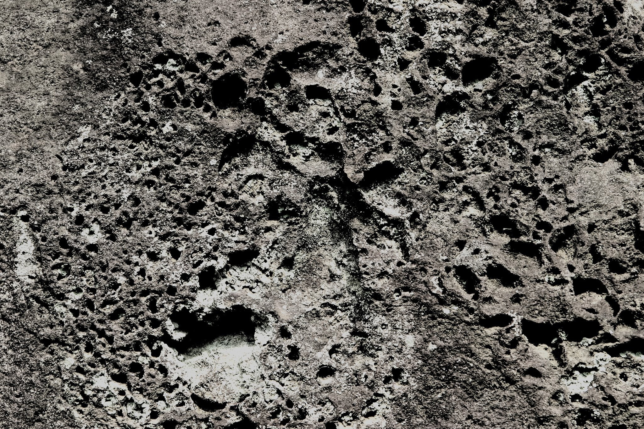 「丸い穴が幾つも開いた石」の素材を無料ダウンロード