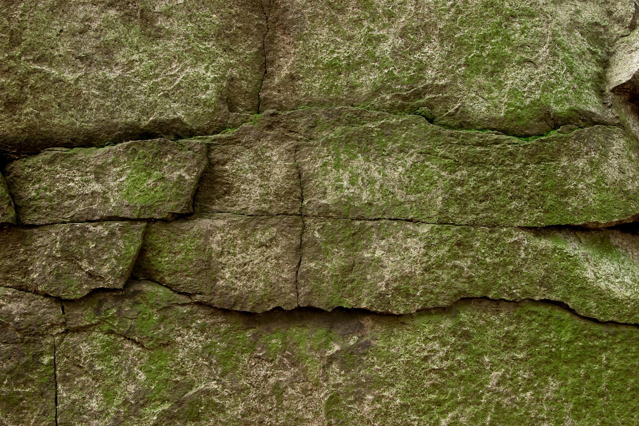 「苔の生えた石積み」のテクスチャを無料ダウンロード