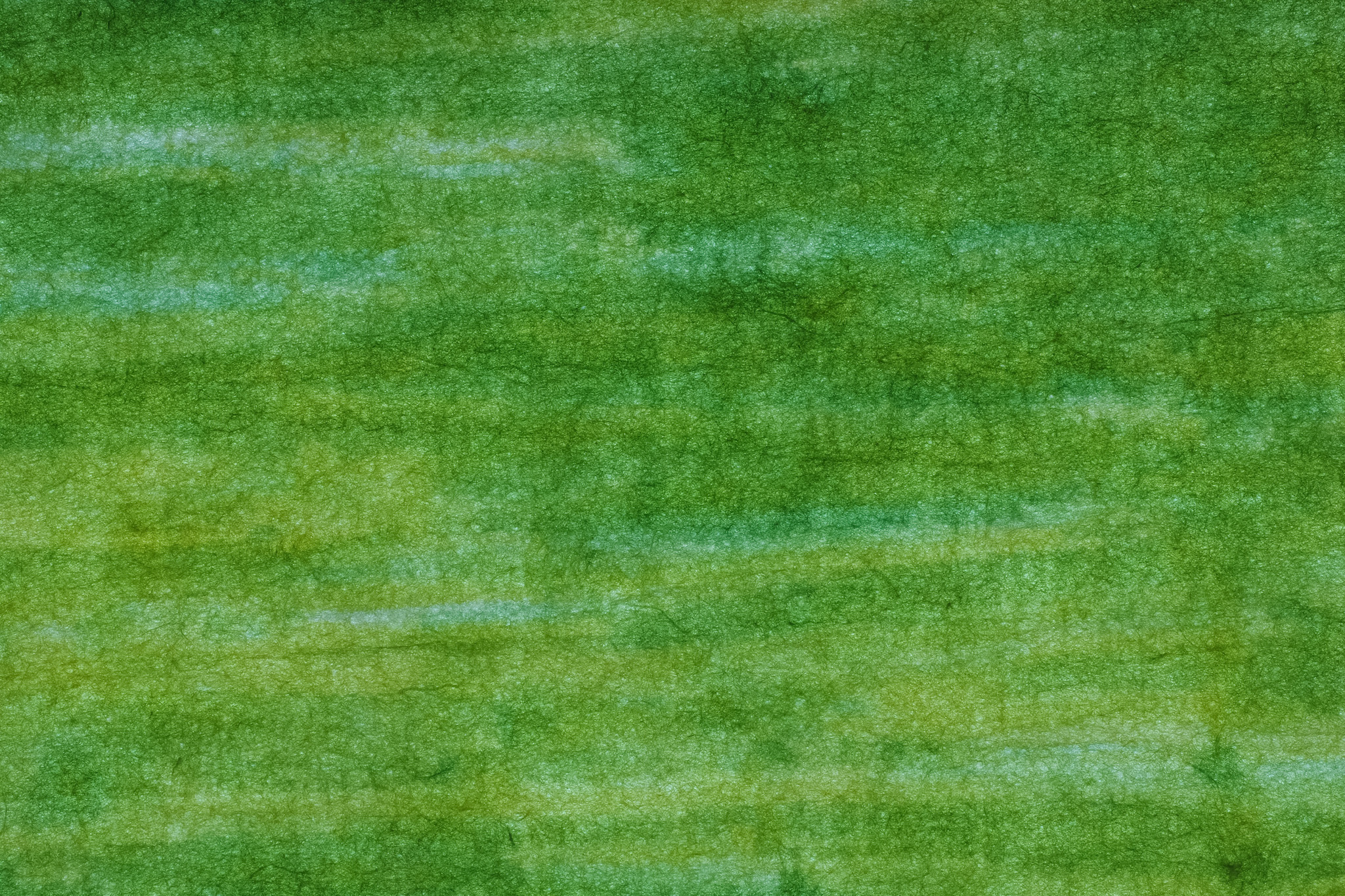 「若草色の模様が入った和紙」