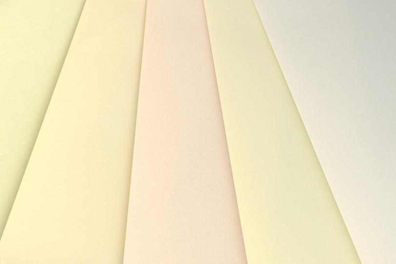 白系のカラーチャートの写真画像