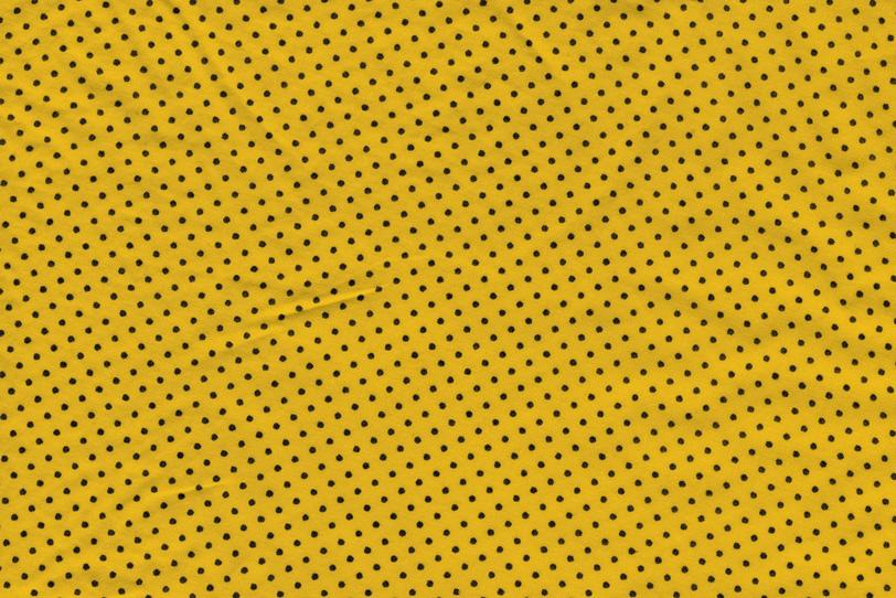 水玉模様の写真画像