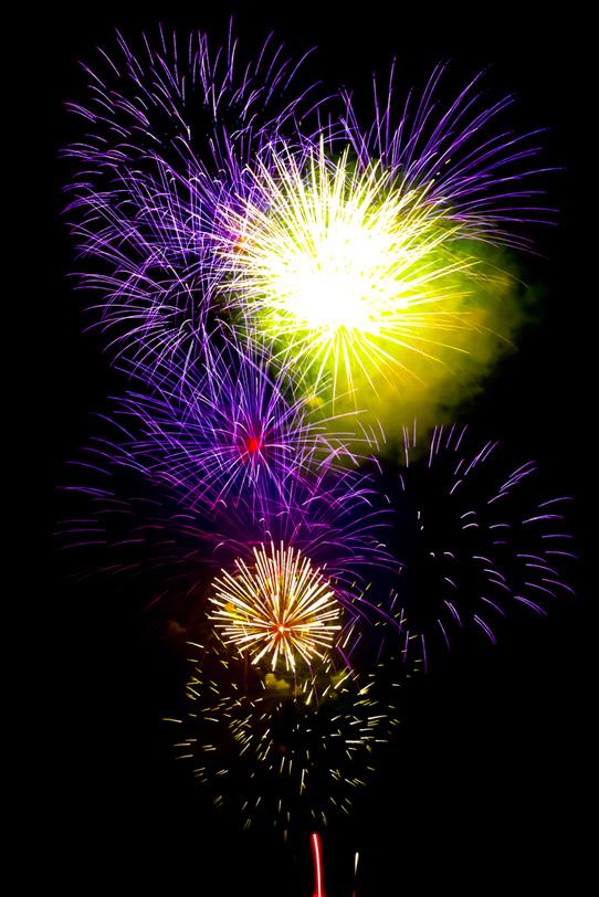 紫と黄色の打ち上げ花火の写真画像