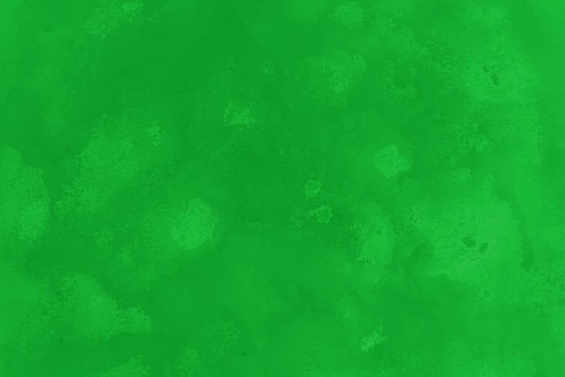緑のおしゃれなフリー画像