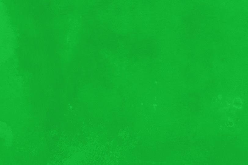 無地の緑の綺麗な画像