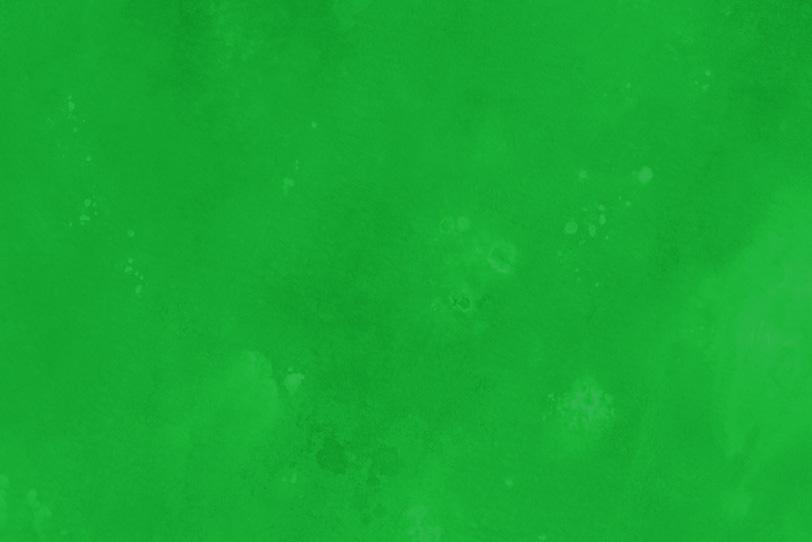 無地の緑の可愛い写真
