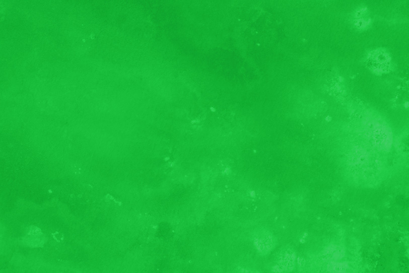 無地の緑のフリー素材