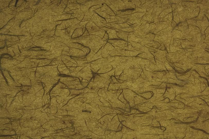 楮繊維が入った路考茶色の雲竜和紙の写真画像