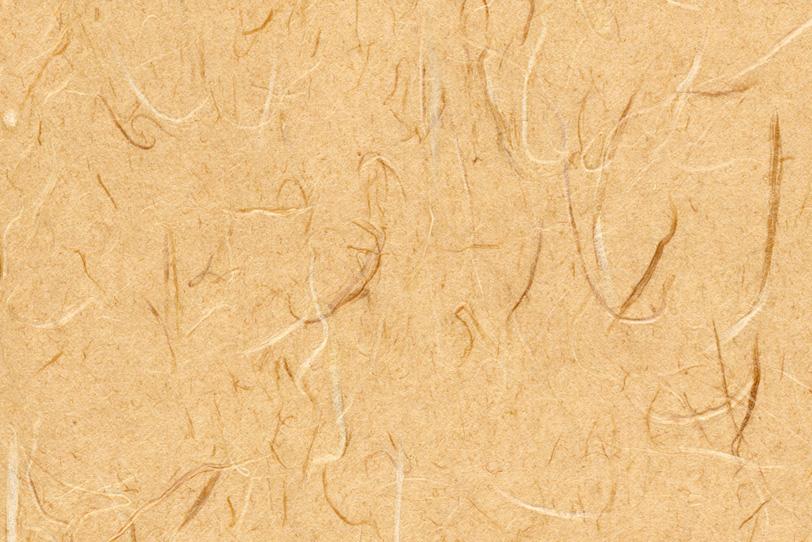 温かみのある大和柿色の和紙の写真画像