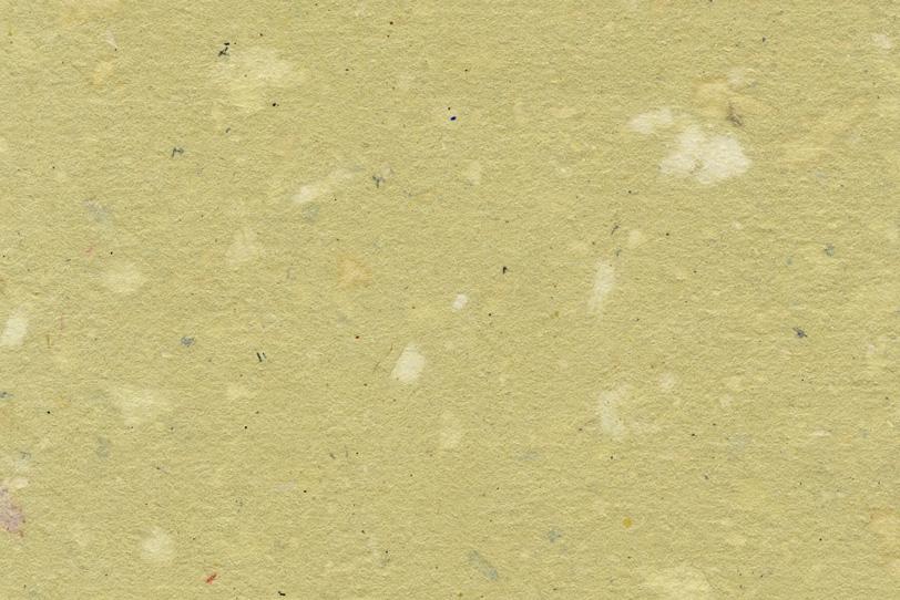 模様の入った木蘭色の因州和紙の写真画像