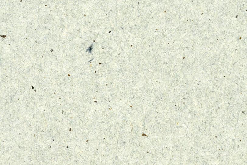 皮繊維入の白い和紙の写真画像