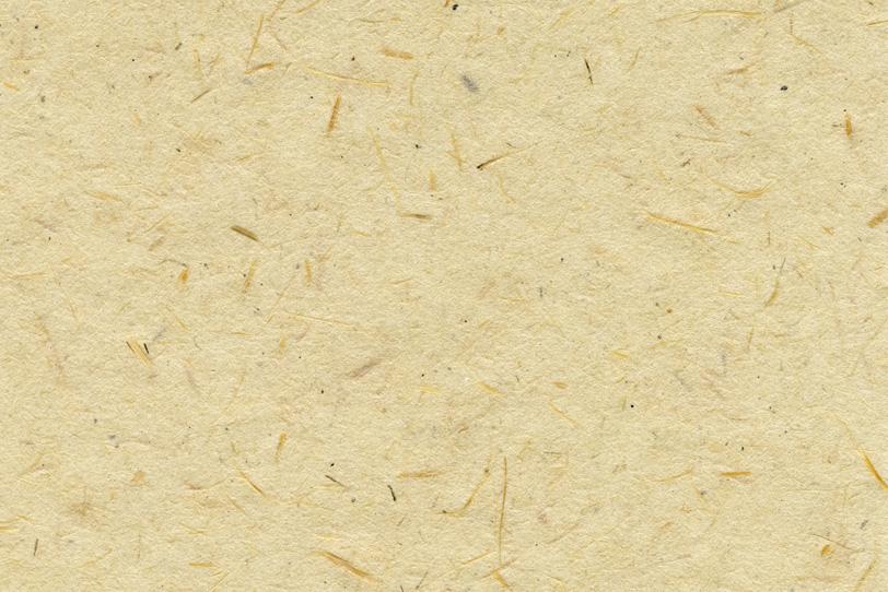繊維の入った生成り色の和紙の写真画像