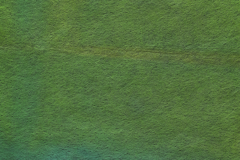 和の風趣に富んだ千歳緑の和紙の写真画像