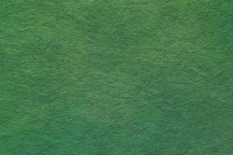 綺麗な松葉色の色染め和紙の写真画像