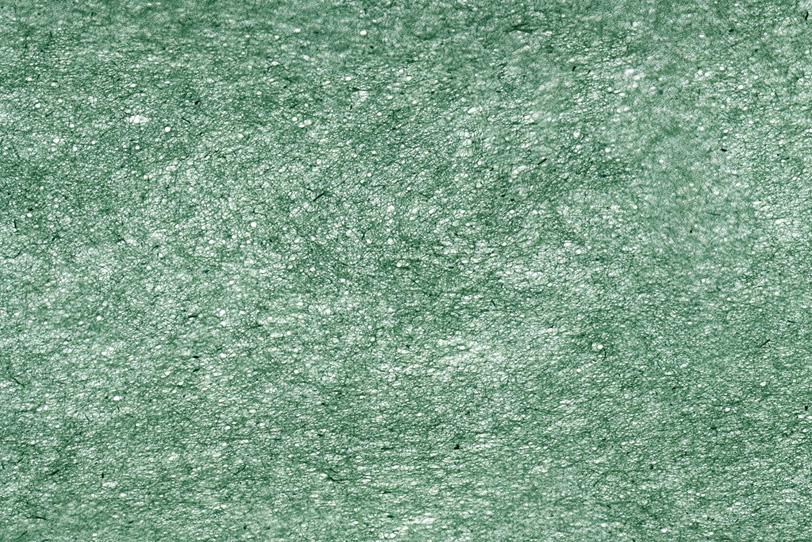緑色の極薄和紙の写真画像