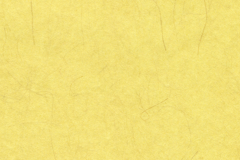 楮の繊維が入った黄蘗色の和紙の写真画像