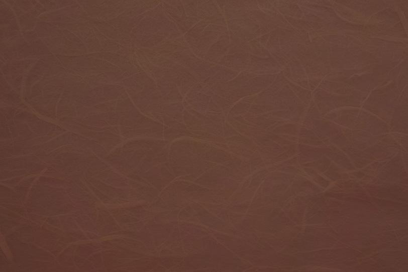 煤けた紀州茶色の雲竜和紙の写真画像