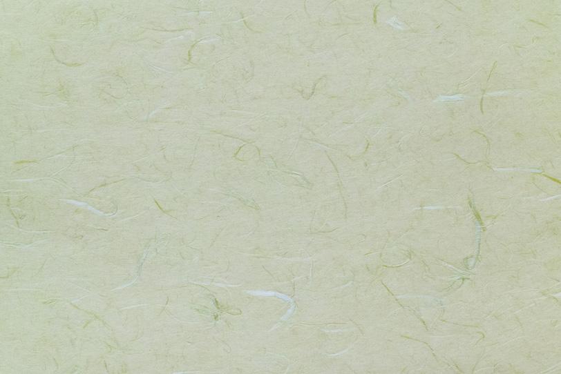 緑と白の楮繊維が入った柳鼠色の雲竜和紙の写真画像