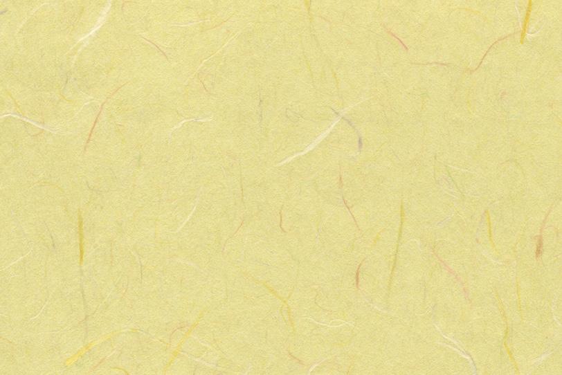 淡黄蘗に染められた因州和紙の写真画像